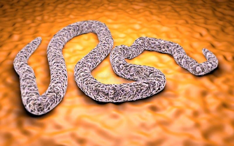 Virus Ebola sous une épidémie de contagion de danger de microscope illustration de vecteur