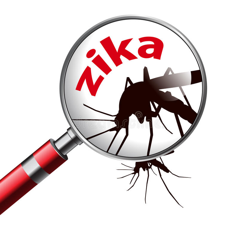 Virus zika. Caution of virus zika infection stock illustration