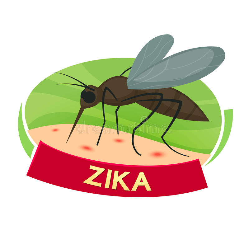 Virus Zika vector illustration. Virus Zika concept design, mosquito bites vector illustration royalty free illustration