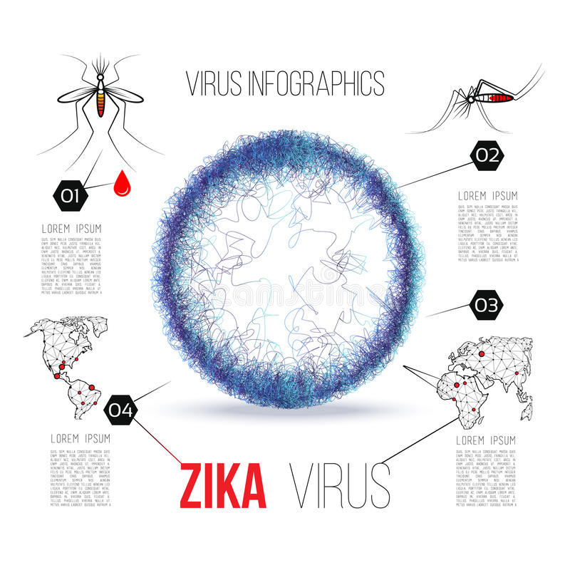 Virus zika vector illustration infographics. With the layout of the virus molecule.Distribution scheme. Sign Virus Zika. Mosquito image of blood vector illustration