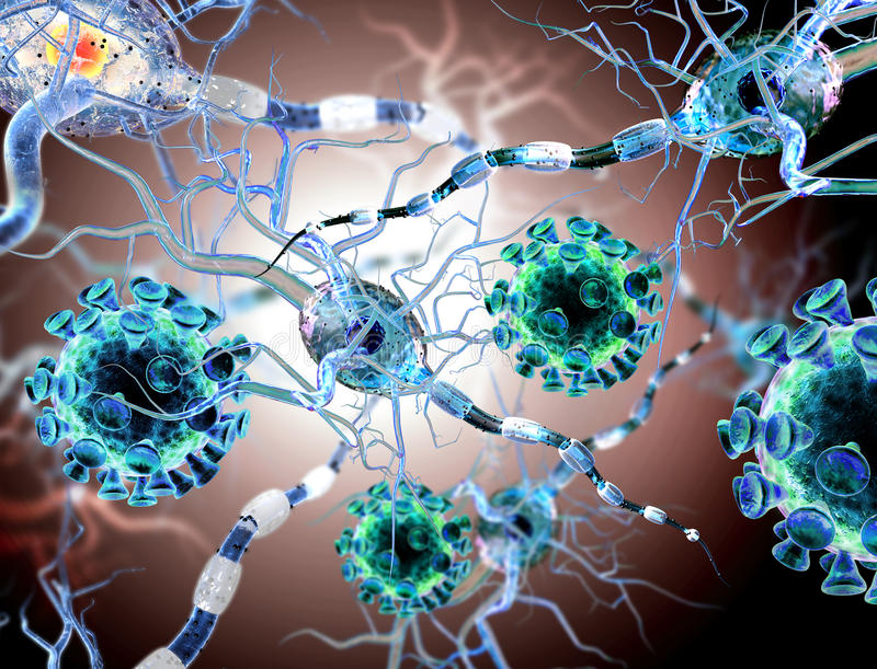 Viruses attacking nerve cells. Concept for Neurologic Diseases, tumors stock photos