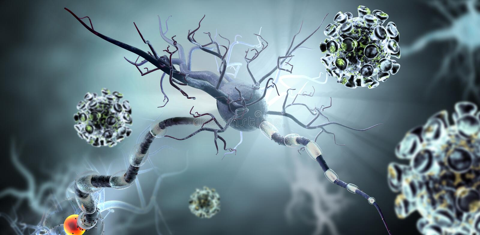 Viruses attacking nerve cells. High quality 3d render of viruses attacking nerve cells, concept for Neurologic Diseases, tumors and brain surgery stock photos