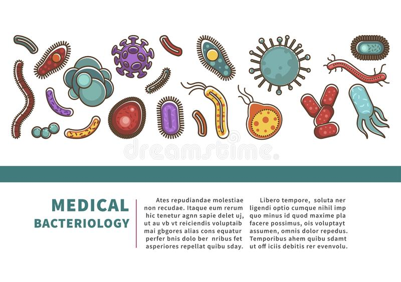Viruses and bacteria information poster for medical healthcare infographics or bacteriology science. Vector flat design for viral disease or bacteria infection stock illustration