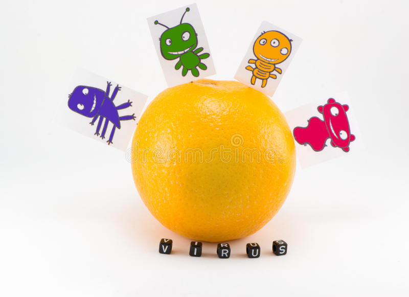 Viruses are sitting. On the orange royalty free stock photo