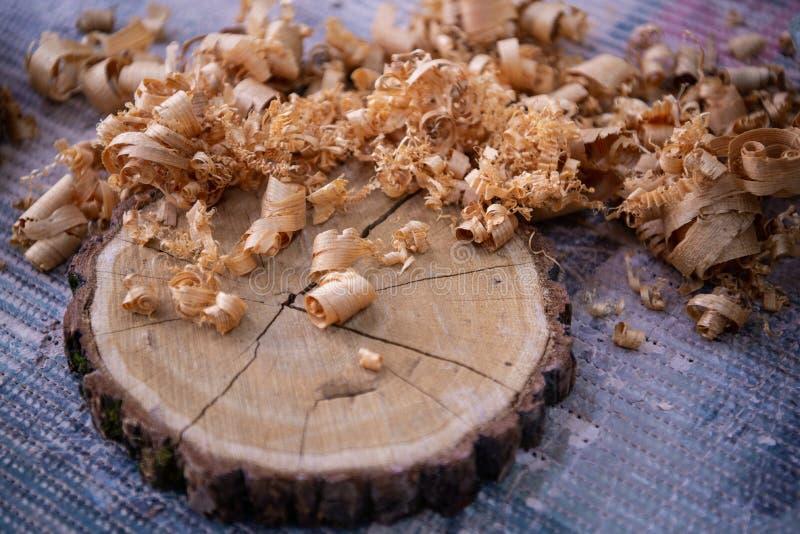 Virutas de madera y corte transversal pálido del árbol en el cierre del banco de trabajo del carpintero para arriba: concepto de  fotos de archivo libres de regalías