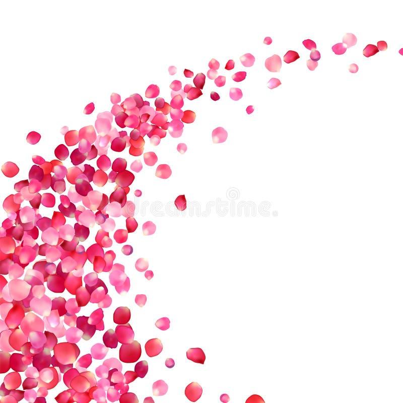 virvel för rosa färgroskronblad royaltyfri illustrationer