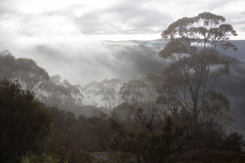 A visão das montanhas circundantes e do nevoeiro nos vales, a partir de Hassans Walls Lithgow, Nova Austrália do Sul de Gales, e imagem de stock royalty free
