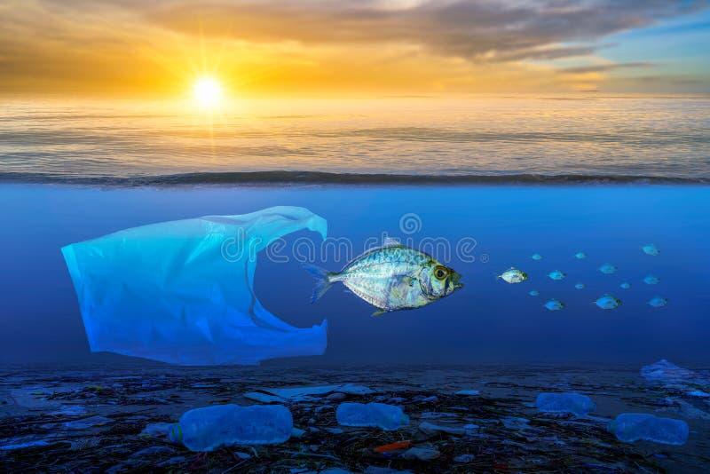 Vis die nadert, drijft aan de oppervlakte, de impact van plastic afval in de zeeconcepten van natuurbehoud royalty-vrije stock foto's