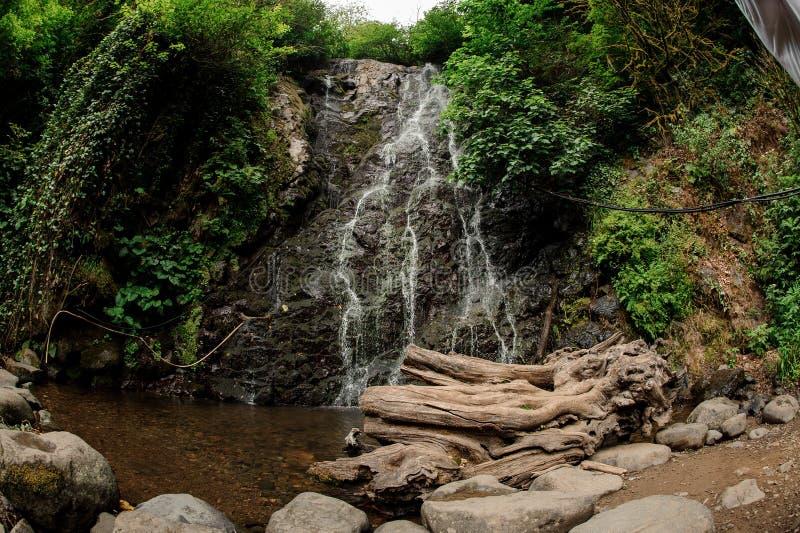 Vis-oog fotolandschap van van de mooie waterval in het bos met de winkelhaak in de voorgrond royalty-vrije stock fotografie