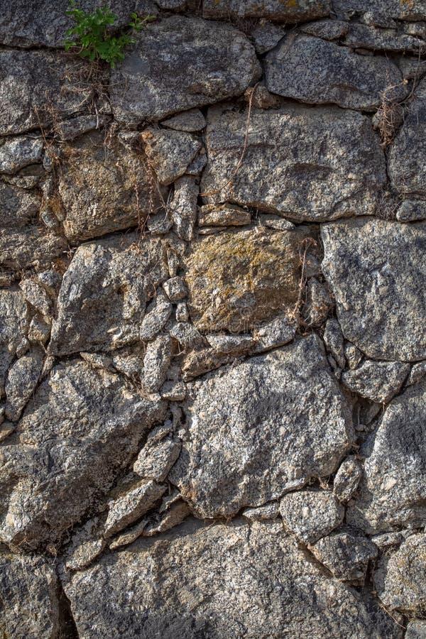 Visa textur i detalj för den parade granitväggen arkivfoto