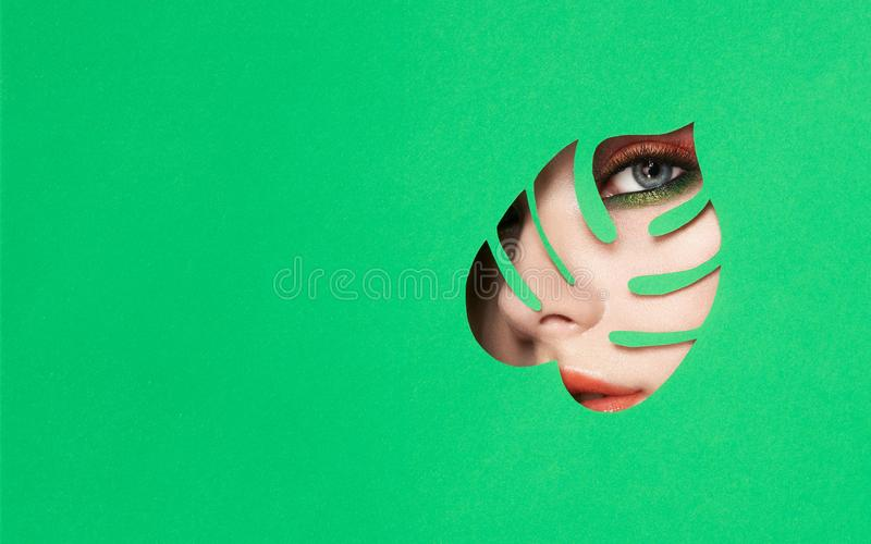 Visage d'une jeune belle femme avec un maquillage de beauté photos libres de droits
