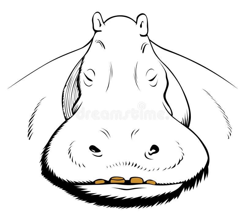 Visage de Hippopotamus illustration stock