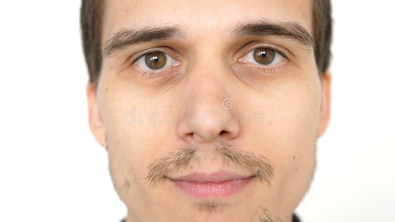 Visage de jeune homme réussi attirant sur un fond blanc photographie stock libre de droits