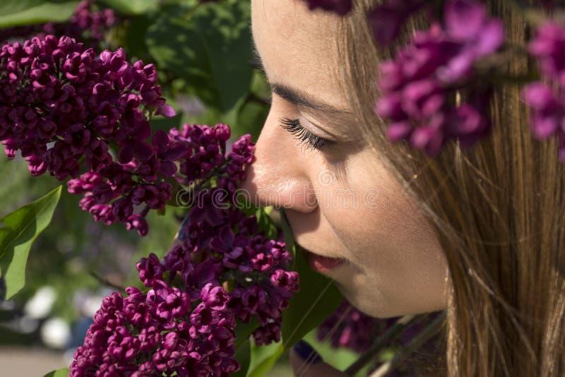 Visage de la fille parmi les fleurs lilas photo libre de droits