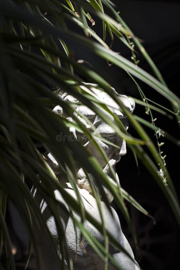 Visage de statue camouflé entre les feuilles image libre de droits