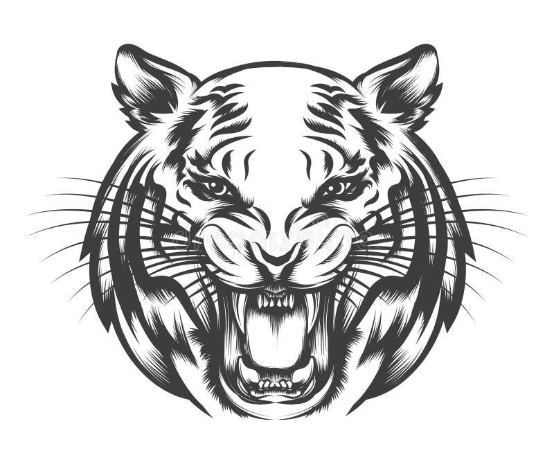 Visage de tigre d'hurlement illustration stock
