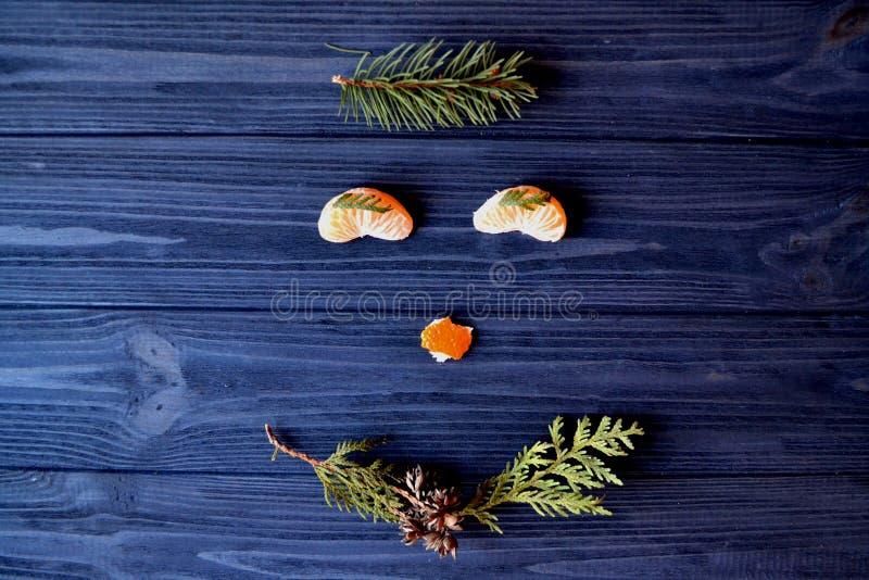 Visage drôle des produits naturels Museau gai sur la vue supérieure de table image stock