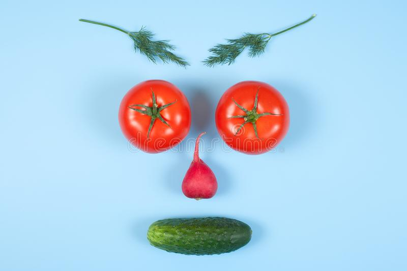Visage drôle des tomates, du concombre, du radis, de l'aneth différent et du romarin de légumes d'isolement sur le fond bleu Cons photos libres de droits