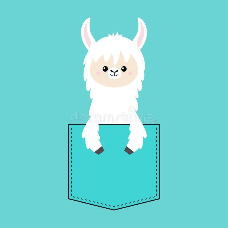 Visage et main de lama d'alpaga dans la poche Conception de T-shirt Caractère drôle de bande dessinée mignonne Animal de Kawaii C illustration libre de droits