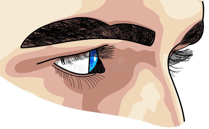 Visage et yeux déterminés. illustration de vecteur