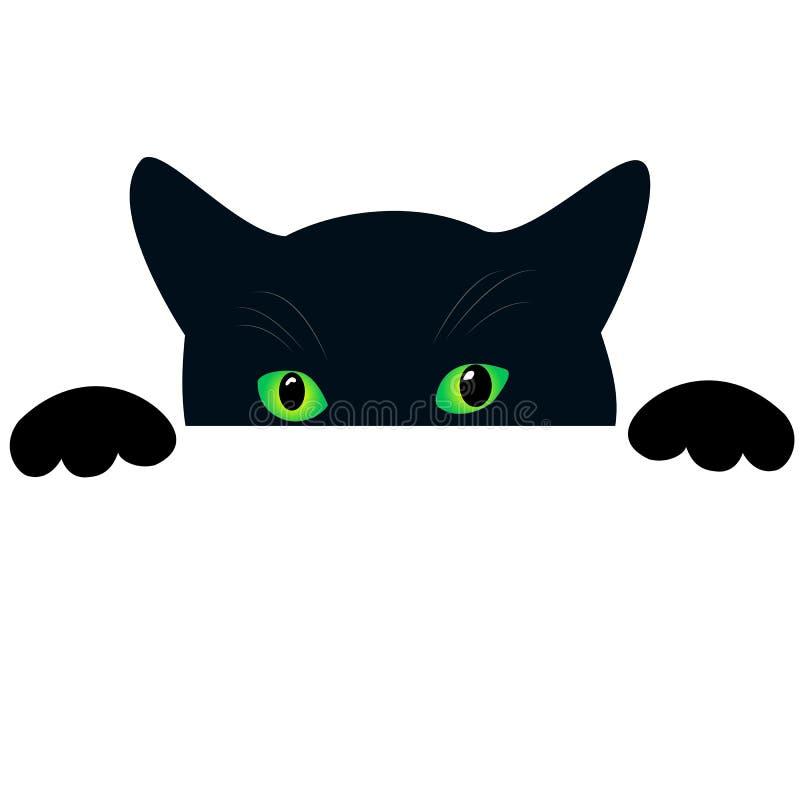 Visage mignon de chat noir avec des peekings de yeux verts Fond blanc d'isolement Peaux drôles curieuses de chat et piaulements,  illustration stock