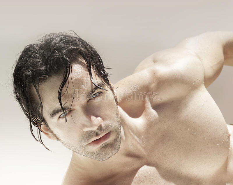 Visage sexy d'homme image stock