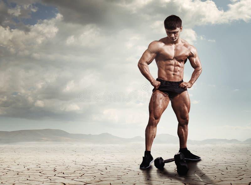 Visar den muskulösa kroppsbyggaremannen för idrottsman nen hans muskler arkivfoto