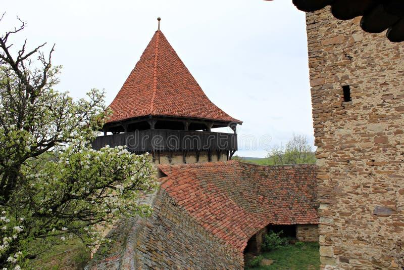 Viscri Versterkte Kerk - muren stock foto