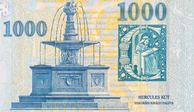 Visegrad Royal Fountain on Hungary 1000 Forint 2006 Banknote fragment. Visegrad Royal Fountain on Hungary 1000 Forint 2006 Banknote close up fragment stock photos