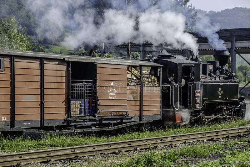 Viseu de sus,罗马尼亚,欧罗巴stazione mocanita 免版税库存图片