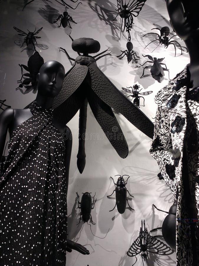 Viseur de bon homme de Bergdorf, New York City, NY, Etats-Unis Élégant, mode photos libres de droits