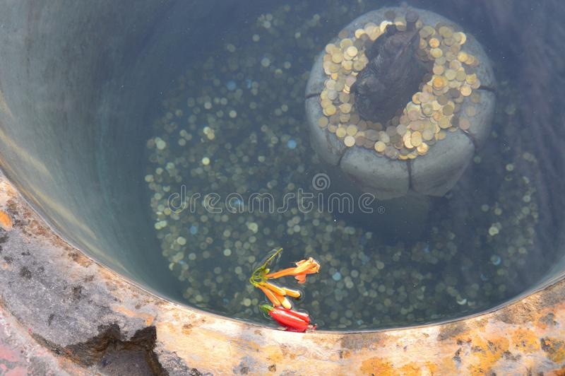 Vishnu dans le puits photo stock