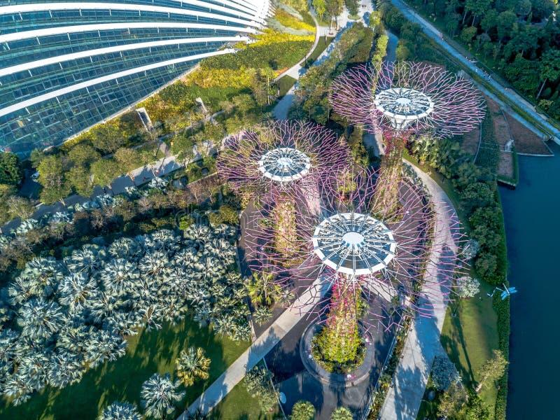 Visión aérea, jardines por la bahía, Singapur fotos de archivo