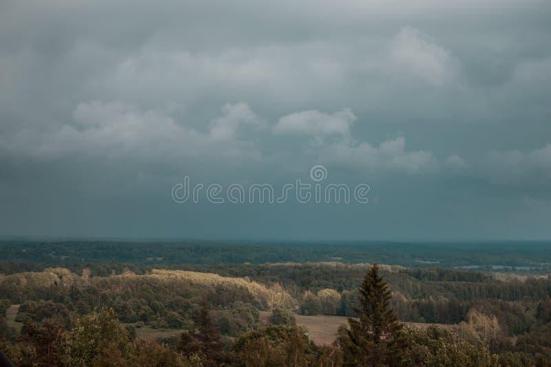 Visión aérea sobre el bosque verde por la tarde Misterio nublado Paisajes de Letonia imagen de archivo