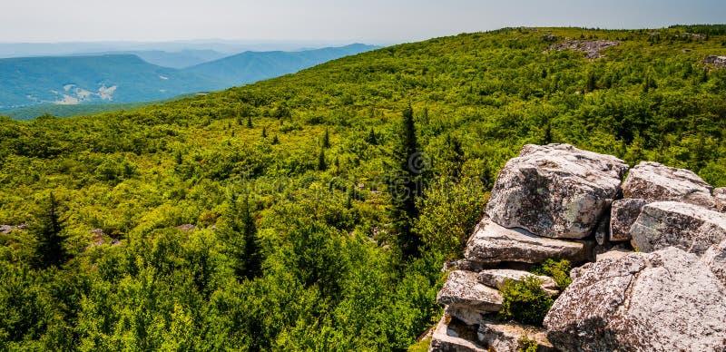 Visión al este de los apalaches de rocas del oso, en las montañas de Allegheny de Virginia Occidental. fotografía de archivo libre de regalías
