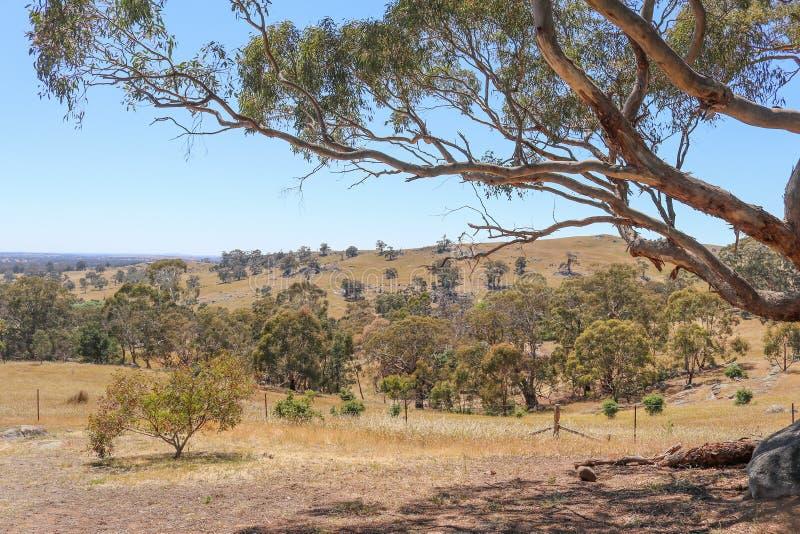 Visión australiana rural hacia el valle en Victoria central, Australia de Sutton Grange en un día soleado imagenes de archivo