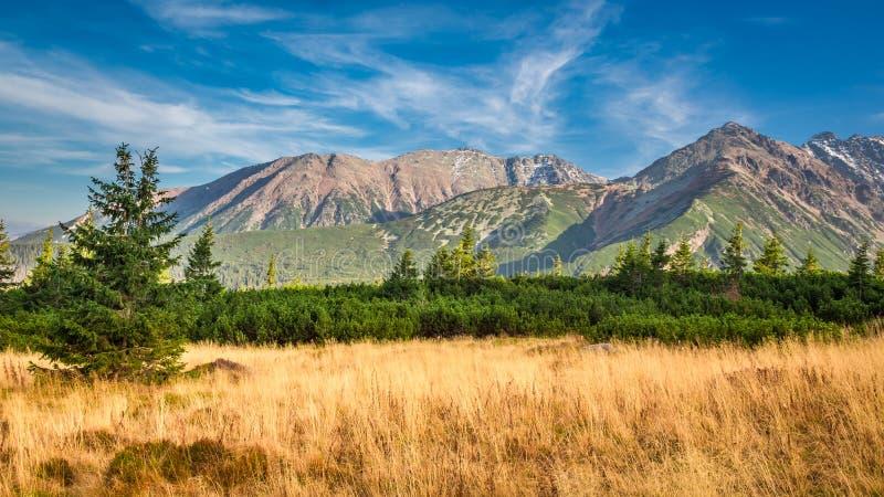 Visión azul y amarilla en las montañas de Tatra en otoño foto de archivo libre de regalías