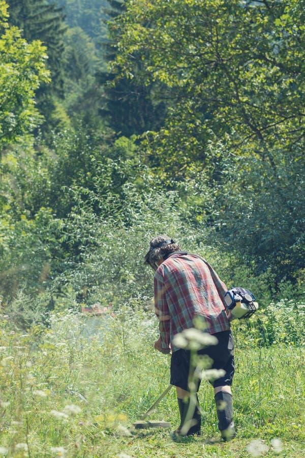 Visión desde de un hombre en naturaleza verde hermosa que siega la alta hierba fotos de archivo libres de regalías