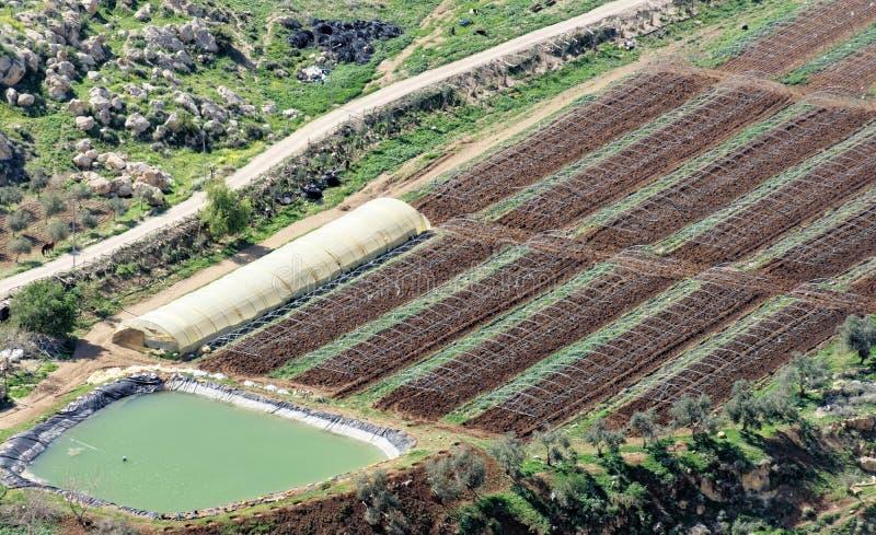 Visión desde el castillo del cruzado de Karak a un lavabo con agua, que sirve para la irrigación de las culturas vegetales foto de archivo