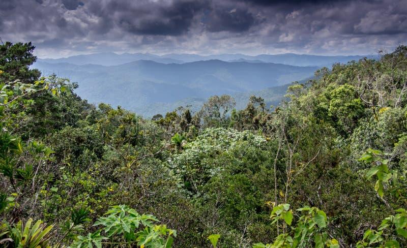 Visión desde el EL Yunque Baracoa fotos de archivo