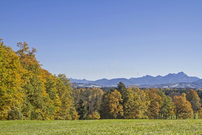 Visión desde el Taubenberg cerca de Miesbach fotografía de archivo