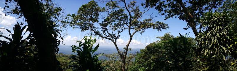 Visión desde el volcán de Mombacho imagen de archivo libre de regalías