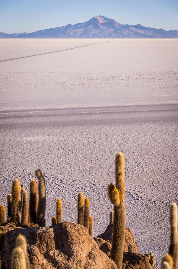 Visión desde Isla Incahuasi fotografía de archivo