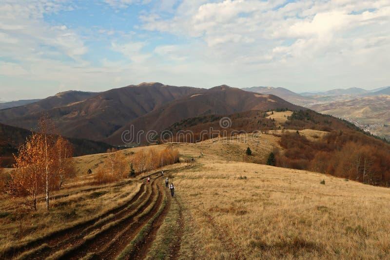 Visión desde la colina al paisaje de la montaña de las montañas cárpatas en un día soleado en otoño imagen de archivo libre de regalías