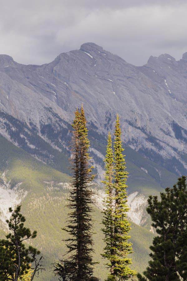 Visión desde la montaña del azufre en Banff, Canadá imagenes de archivo