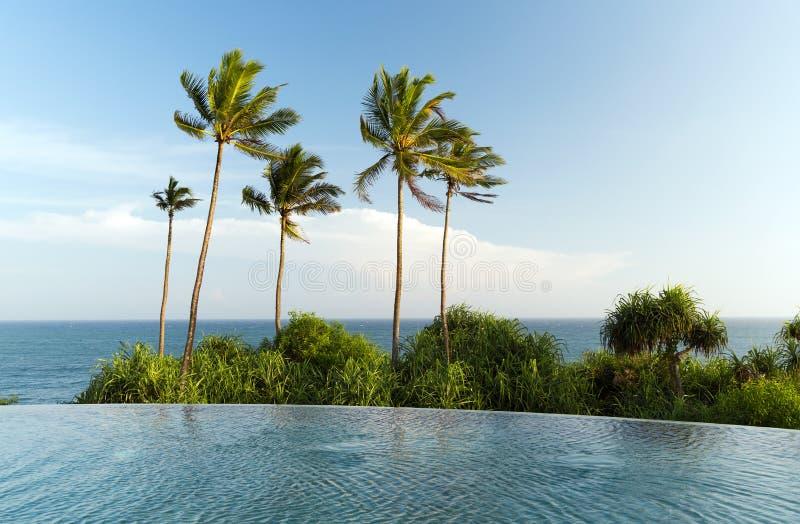 Visión desde la piscina del borde del infinito al océano y a las palmas fotografía de archivo libre de regalías