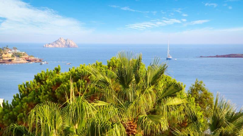 Visión desde la ventana del hotel en una palmera hermosa foto de archivo