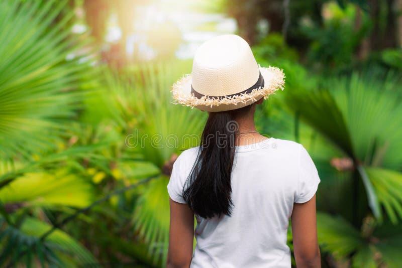 Visión desde una situación del sombrero de paja de la muchacha que lleva en el jardín de la palma bajo luz del sol imagen de archivo