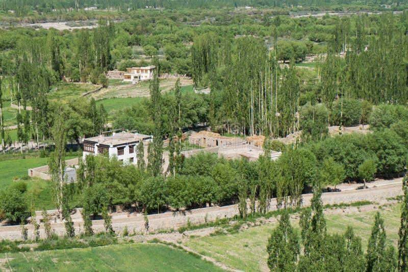 Download Visión Detrás Del Palacio De Shey En Leh Ladakh Foto de archivo - Imagen de barranca, rango: 64213092