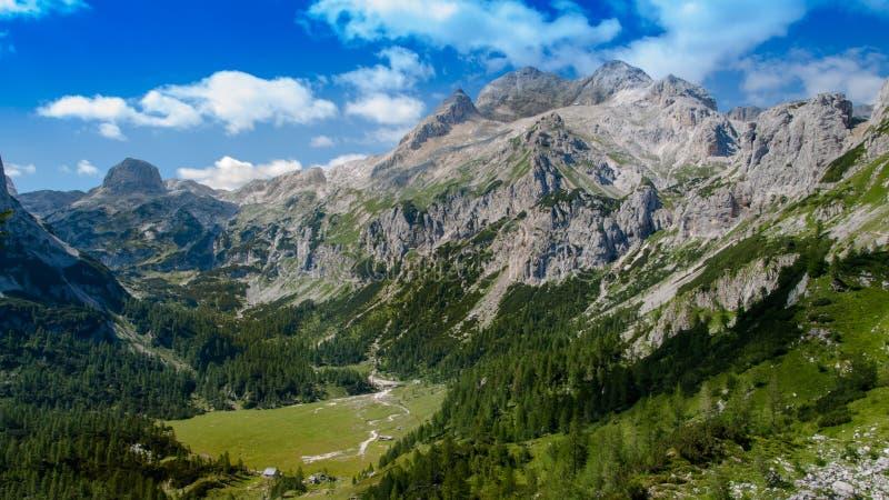 Visión en el parque nacional de Triglav fotografía de archivo
